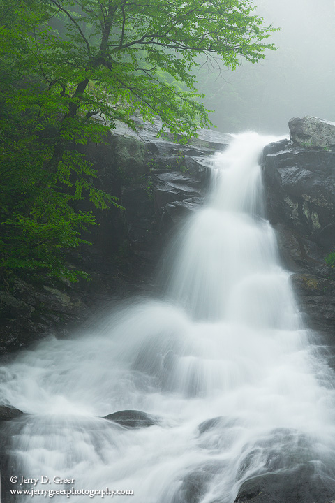 Whiteoak Falls_upper_spring fog 1